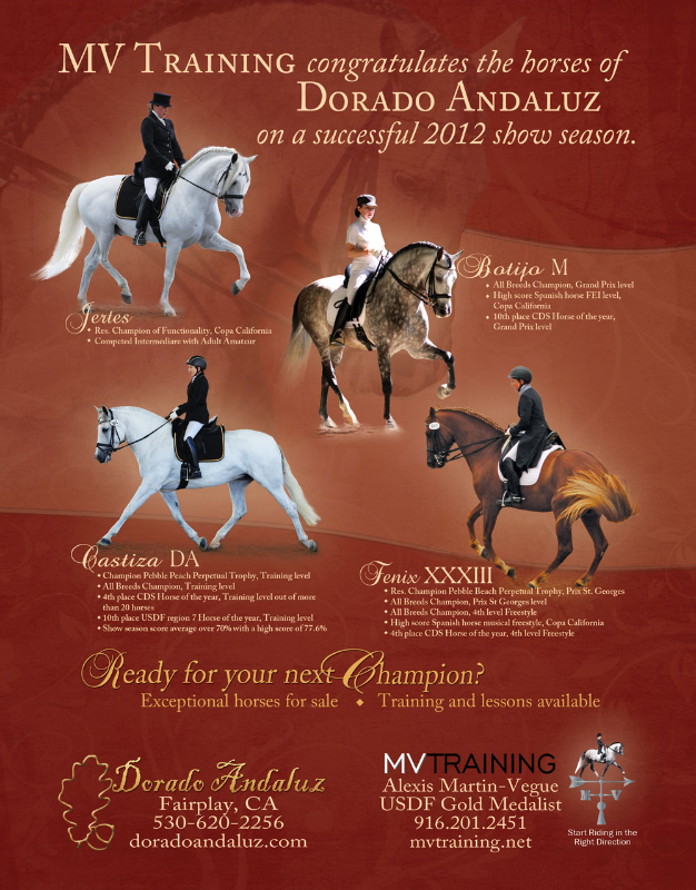 andalusian-alliance-full-page