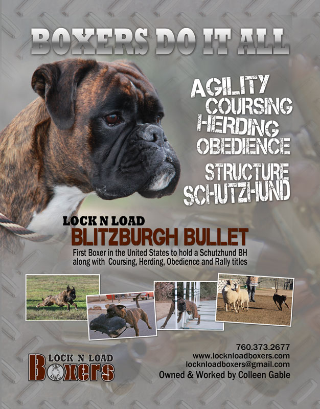 Lock N Load Boxers Full Page Ad