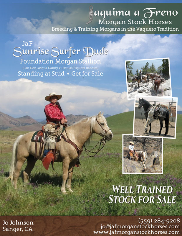 JaF Morgan Stock Horses Full Page Ad