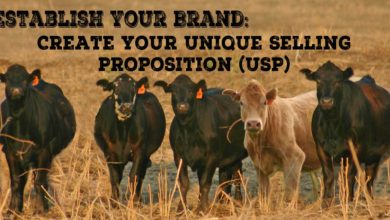 Establish Your Brand: Create Your Unique Selling Proposition (USP) – The Branding Pen Article 6.1