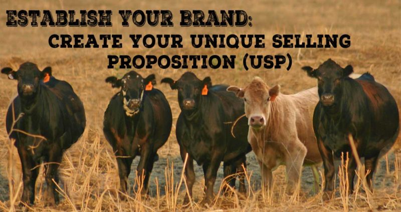 Create Your Unique Selling Proposition (USP)