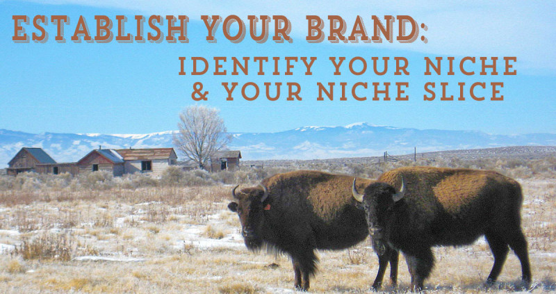 Identify Your Niche