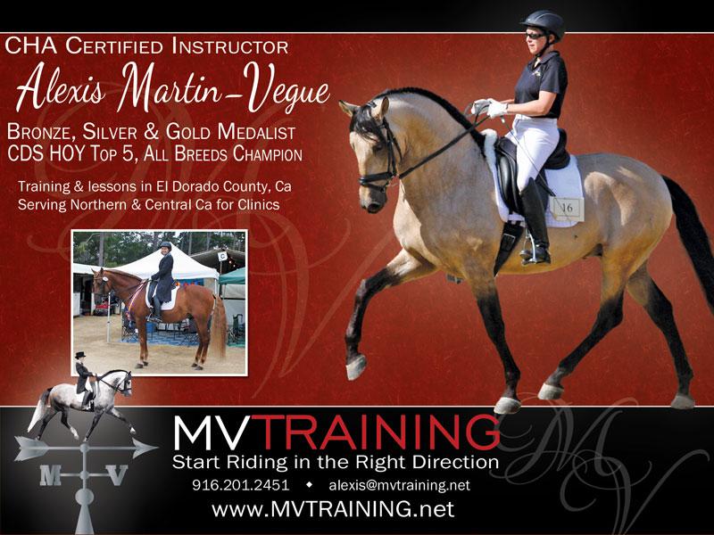 MV Training