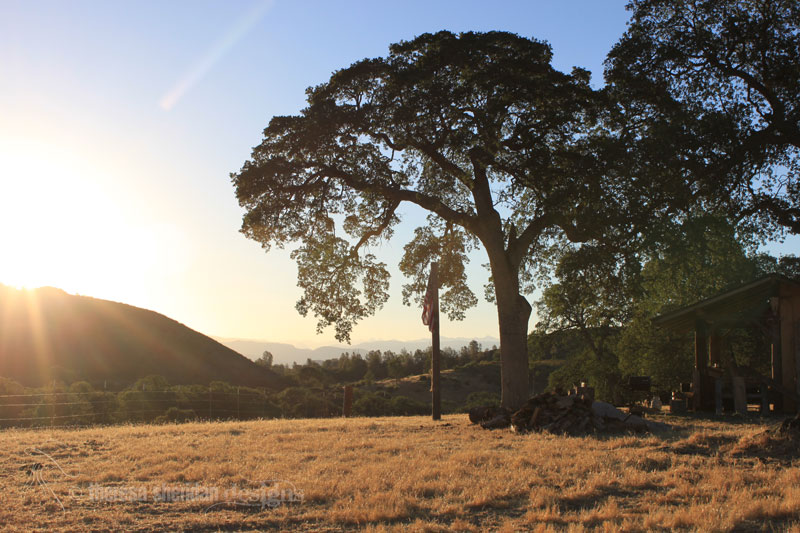 Sunrise at Schilling
