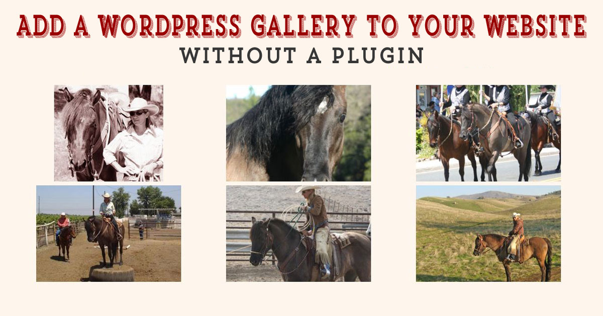 Add a wordpress photo gallery