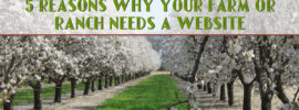 5 Reasons Why Your Farm or Ranch Needs a Website
