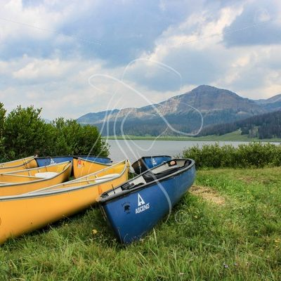 Blue and yellow canoes on the lake shore - Theresa Sheridan Designs