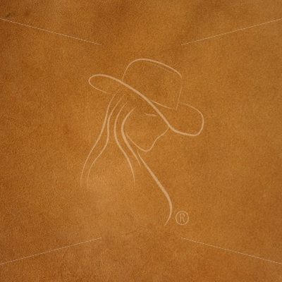 Burnt orange leather texture - Theresa Sheridan Designs