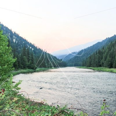 Clearwater river in early morning - Theresa Sheridan Designs
