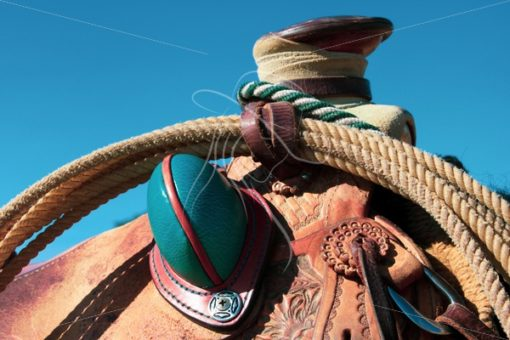 Close up of saddle horn with rope & bucking roll - Theresa Sheridan Designs