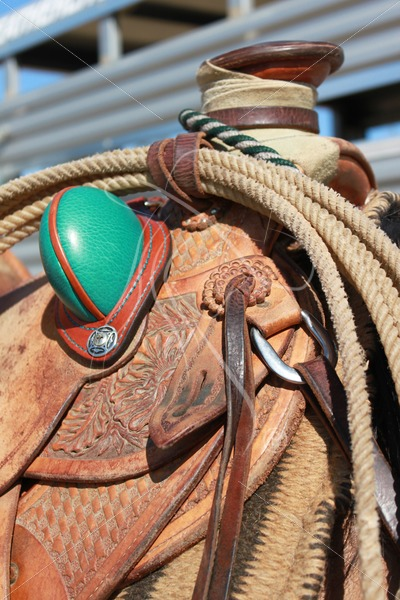 Close up of western slick fork saddle with rope - Theresa Sheridan Designs