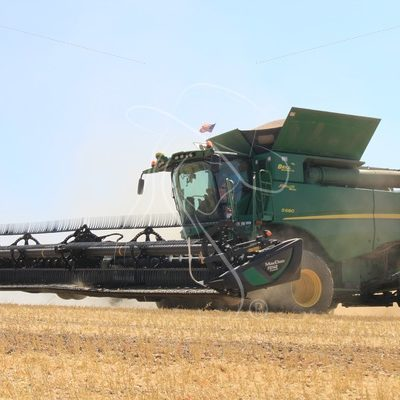 Combine during bean harvest - Theresa Sheridan Designs