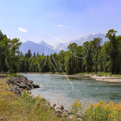 Creek with Grand Tetons in the background - Theresa Sheridan Designs