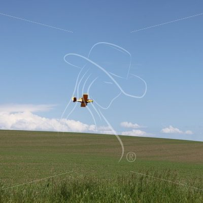 Crop duster flying - Theresa Sheridan Designs