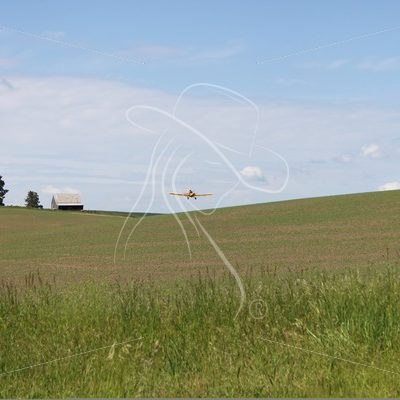 Crop duster flying in the distance - Theresa Sheridan Designs