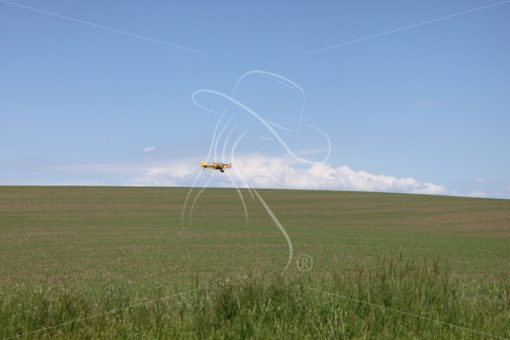 Crop duster flying low to the ground - Theresa Sheridan Designs