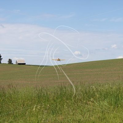 Crop duster flying over field - Theresa Sheridan Designs