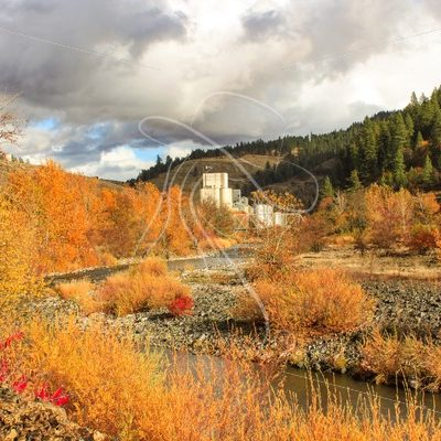 Fall foliage in Idaho - Theresa Sheridan Designs