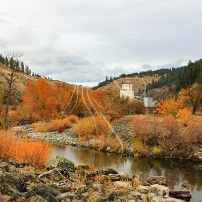 Fall foliage on Potlatch Creek in Kendrick, Idaho - Theresa Sheridan Designs