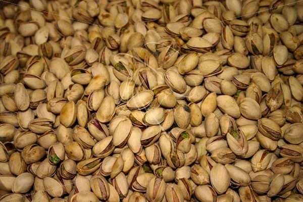 Fresh pistachio nuts in the shell - Theresa Sheridan Designs