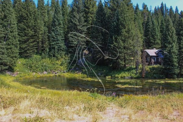 Johnny Sack cabin at Henry's Fork headwaters of the Snake River - Theresa Sheridan Designs