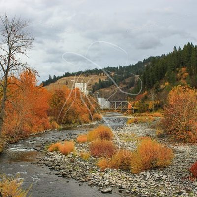 Looking towards Kendrick Idaho on Potlatch creek with fall colors - Theresa Sheridan Designs