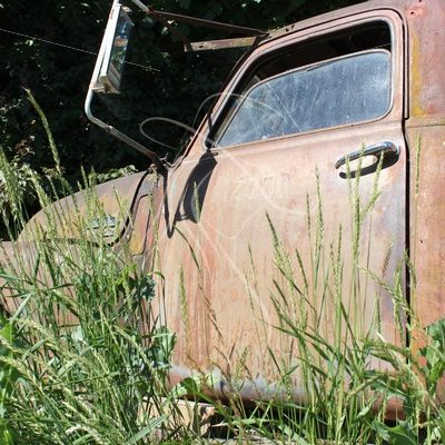 Old GMC pickup truck in overgrown grass - Theresa Sheridan Designs