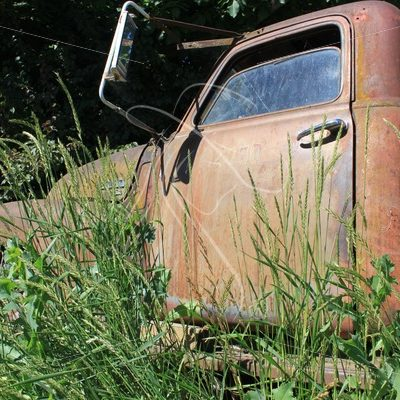 Old GMC work truck in overgrown grass - Theresa Sheridan Designs