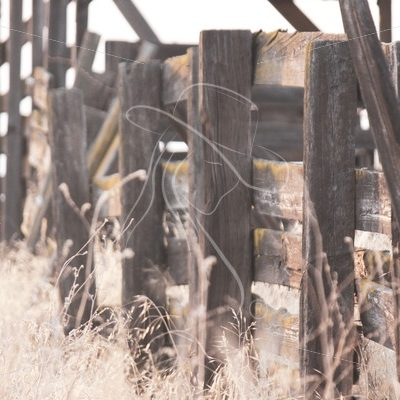 Old fence on loading chute alley - Theresa Sheridan Designs