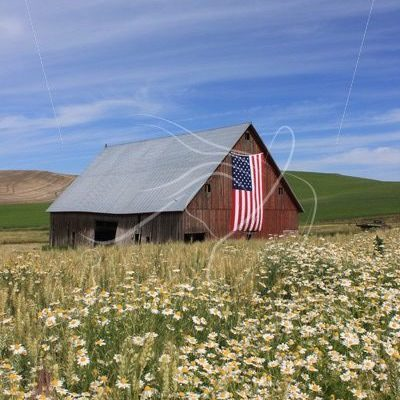 Old red barn with US flag - Theresa Sheridan Designs