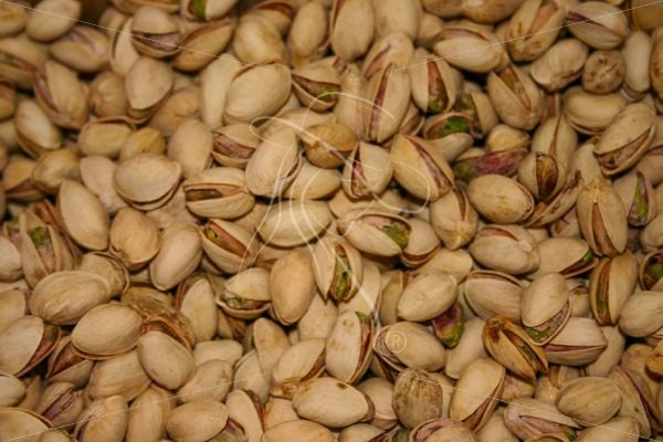 Pistachio nuts in the shell - Theresa Sheridan Designs