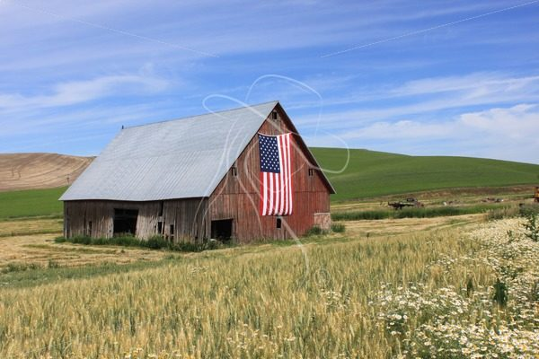 Red barn with US flag and blue sky - Theresa Sheridan Designs