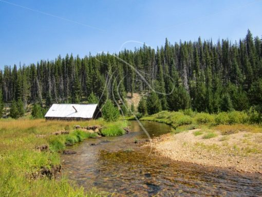 Rustic cabin on Meadow Creek, Red River, Idaho - Theresa Sheridan Designs