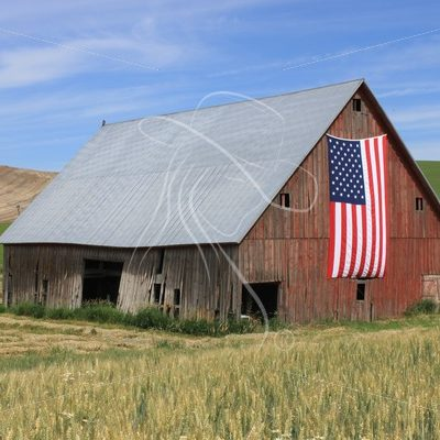 Rustic red barn with US flag - Theresa Sheridan Designs