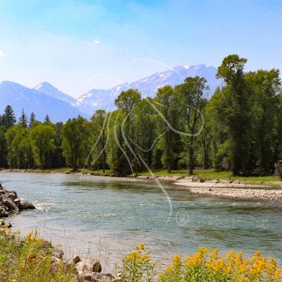 Scenic creek with Grand Teton mountains - Theresa Sheridan Designs