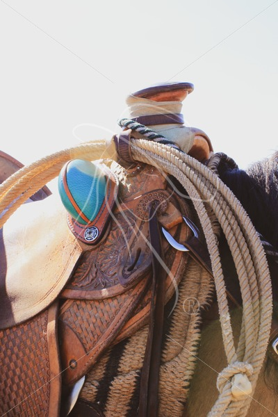 Slick fork saddle with lariat and turquoise bucking rolls - Theresa Sheridan Designs