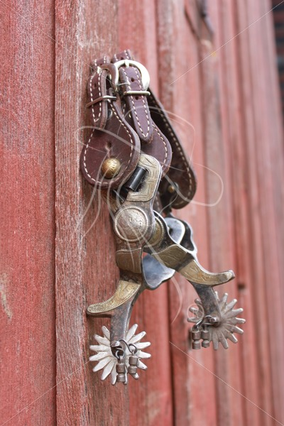 Spurs hanging on red barn wall - Theresa Sheridan Designs