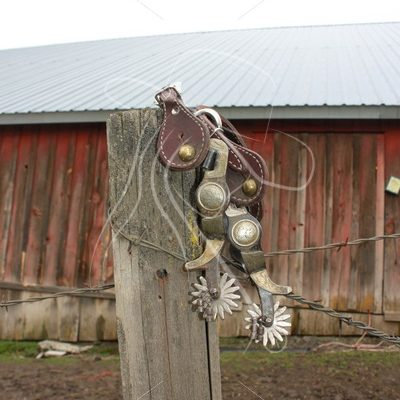 Spurs sitting on fence post with barn in background - Theresa Sheridan Designs
