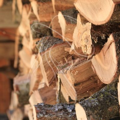 Stack of firewood close up - Theresa Sheridan Designs