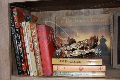 Vintage books and spurs on bookshelf - Theresa Sheridan Designs