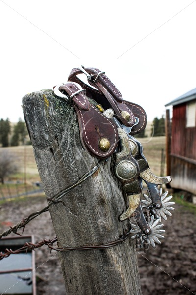 Western spurs hanging on fence post - Theresa Sheridan Designs