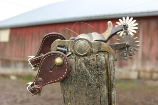 Western spurs sitting on fence post - Theresa Sheridan Designs