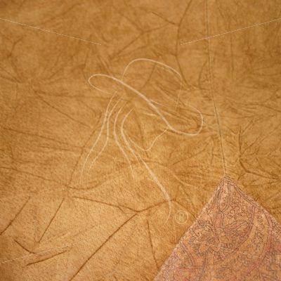 Wrinkled leather texture - Theresa Sheridan Designs