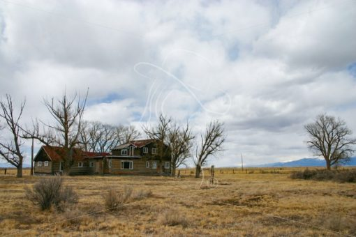 Abandoned log ranch house - Theresa Sheridan Designs