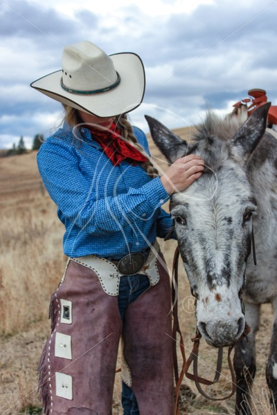 Cowgirl and her appy mule - Theresa Sheridan Designs