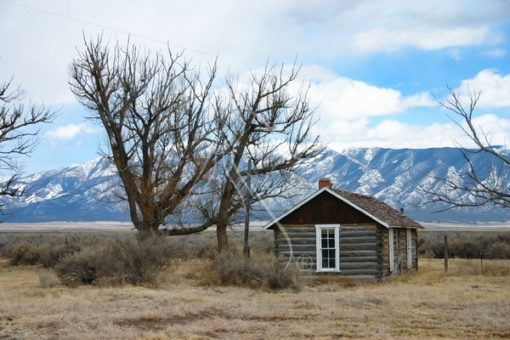Old log cabin in Colorado - Theresa Sheridan Designs