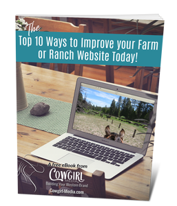 The Top 10 Ways to Improve Your Farm or Ranch Website