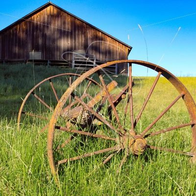 Rusty wagon wheels in grass with wood barn in background - Cowgirl Media