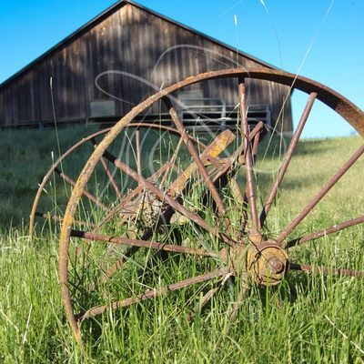 Vintage wagon wheels with barn in background - Cowgirl Media