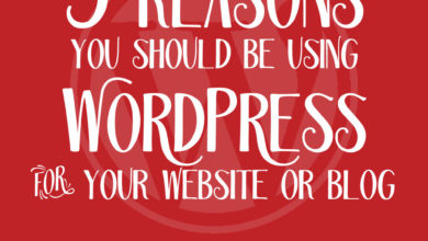 5 Reasons You Should Be Using WordPress for Your Website or Blog